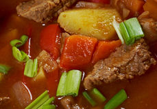 Chorba búlgaro tradicional da sopa. Fotografia de Stock Royalty Free