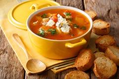 Sopa caliente del búfalo con el pollo, las verduras y cierre del queso verde Imagenes de archivo