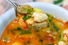 Sopa caliente y amarga con el camarón y la verdura foto de archivo libre de regalías