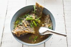 Sopa caliente y amarga de los pescados Fotos de archivo