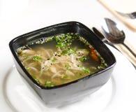 Sopa caliente y picante con los tallarines de la carne y de las pastas Imágenes de archivo libres de regalías
