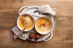 Sopa caseiro da sopa de peixe com queijo Imagem de Stock