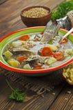 Sopa caseiro de peixes do rio na bacia Imagem de Stock Royalty Free