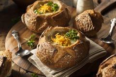 Sopa caseiro dos brócolis e do queijo Cheddar fotos de stock royalty free