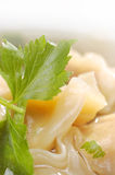 Sopa chinesa do bolinho de massa Fotografia de Stock