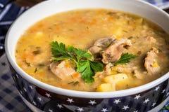 Sopa com as moela da cevada e da galinha Imagem de Stock