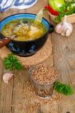 Sopa com aveia em flocos de trigo mourisco foto de stock royalty free