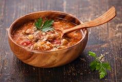 Sopa com carne e arroz fotografia de stock