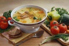 sopa com carne e massa fotografia de stock royalty free