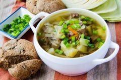 Sopa com carne e repolho fotografia de stock royalty free