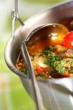 Sopa com carne e vegetais Fotografia de Stock