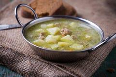 Sopa com carne e vegetais Foto de Stock Royalty Free
