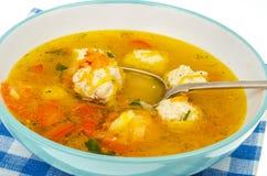 Sopa com cenoura, cebola, paprika e almôndegas Imagens de Stock