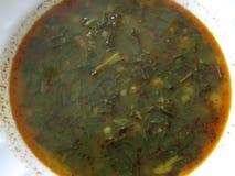 Sopa com espinafres Fotografia de Stock