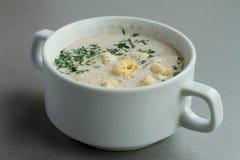 Sopa com fritos de pão Imagem de Stock