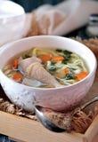 Sopa com macarronetes caseiros e a galinha orgânica com cenouras, raiz e folhas de varas da salsa, da cebola e de aipo Foto de Stock