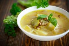Sopa com pepinos conservados imagem de stock royalty free