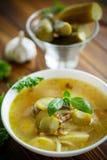 Sopa com pepinos conservados imagens de stock royalty free