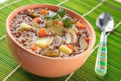 Sopa com trigo mourisco e os pepinos conservados Imagens de Stock Royalty Free