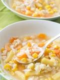 Sopa com vegetais e macarrão Fotografia de Stock