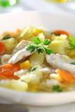 Sopa con el pollo Fotografía de archivo