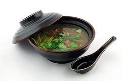 Sopa con la carne Foto de archivo libre de regalías