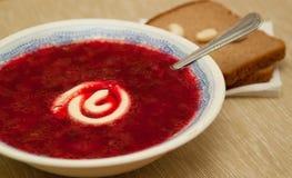 Sopa con mayonesa Imagen de archivo libre de regalías