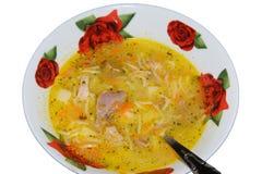 Sopa condimentada con la carne en la placa Imagenes de archivo