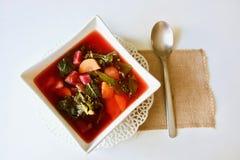 Sopa cor-de-rosa saboroso da couve da beterraba Fotografia de Stock Royalty Free