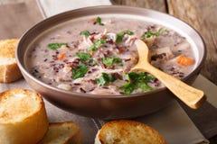 Sopa cremosa caseiro do arroz selvagem com cl da galinha e dos vegetais Fotografia de Stock