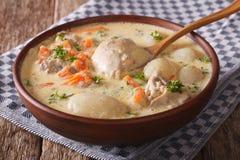 A sopa cremosa com galinha e os vegetais fecham-se acima em uma bacia Hori Fotografia de Stock