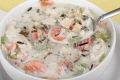 Sopa cremosa da galinha e do arroz Fotografia de Stock
