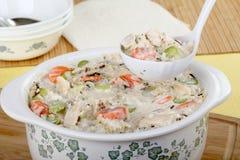 Sopa cremosa do arroz da galinha Fotos de Stock Royalty Free