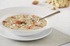Sopa cremosa do arroz selvagem da galinha Imagens de Stock Royalty Free