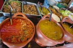 Sopa, curry y comidas calientes en cuencos Fotos de archivo libres de regalías
