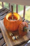 Sopa da abóbora em uma bacia com as ervas frescas das abóboras, do alho e da salsa imagem de stock royalty free