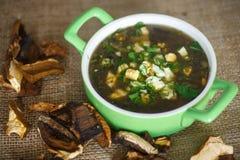 Sopa da azeda com cogumelos secados Imagens de Stock