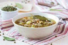 Sopa da carne com carne, feijões verdes de mung, leguminosa, indiano quente Imagem de Stock