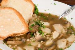 Sopa da carne e da cevada Foto de Stock Royalty Free