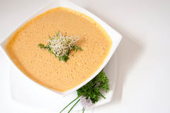 Sopa da cenoura do vegetariano Fotografia de Stock Royalty Free