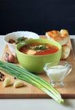 Sopa da couve com creme de leite, as cebolas verdes e o alho Fotografia de Stock