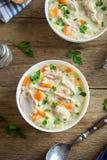 Sopa da galinha e do arroz selvagem Imagens de Stock Royalty Free