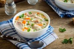 Sopa da galinha e do arroz selvagem Fotos de Stock