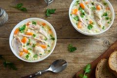 Sopa da galinha e do arroz selvagem Fotografia de Stock