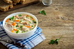 Sopa da galinha e do arroz selvagem Foto de Stock