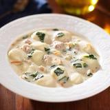 Sopa da galinha e do gnocchi em um fim da bacia acima Foto de Stock Royalty Free