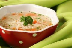 Sopa da galinha ou do peru Fotografia de Stock