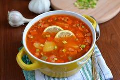 Sopa da mistura de Solyanka com salsichas, batatas e limão Foto de Stock