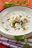 Sopa de batata do verão com radish e couve-rábano fotos de stock royalty free
