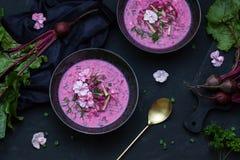 Sopa de beterrabas do vegetariano com as flores Vista superior Copie o espaço Fotos de Stock